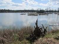 Kouzlo třeboňských rybníků na dosah