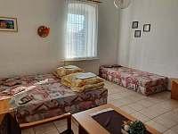 Apartmán pro 2-3 osoby - ubytování Zliv