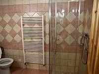 koupelna - apartmán k pronajmutí Kájov
