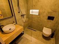 koupelna - chalupa k pronájmu Velké Nepodřice