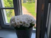 Výhled z okna - Velké Nepodřice