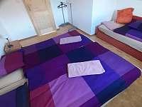 1. Pokoj s manželskou postelí a jedním lůžkem navíc - Vitějovice