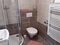 Koupelna se sociálním zařízením - chata ubytování Vitějovice
