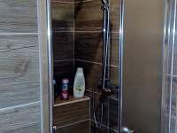 Apartmán č. 1 - koupelna - pronájem chalupy Blatná