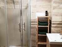 Apartmán č. 2 - koupelna - pronájem chalupy Blatná