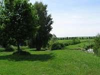 Břeh velkého rybníka