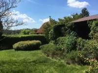 zahrada - srub k pronájmu Košín u Tábora