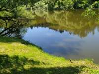 Břeh Lužnice - Nuzice