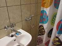 Sprcha+umyvadlo - chata k pronájmu Černá v Pošumaví - Radslav