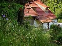 Slunovrat - chalupa k pronájmu Benešov nad Černou