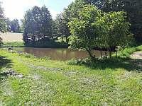 Soukromý rybník - apartmán k pronájmu Blažejov
