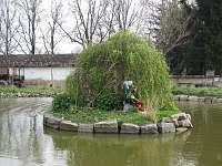 Hastrman na rybníčku - chalupa k pronájmu Olší
