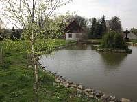 Rybníček v Olší -