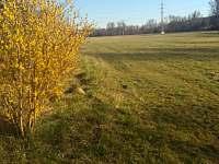 Jarní louka před vilkou - vila k pronájmu Horosedly