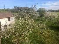 Zahrada na jaře - Horosedly