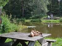 Dolní rybník u chalupy - Modletice