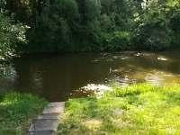 """""""Stará řeka"""" Lužnice cca 10 m od objektu - chata k pronájmu Frahelž - Lomnice nad Lužnicí"""
