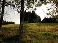 Vyražte do Popelických lesů na houby - chalupa k pronajmutí Daleké Popelice