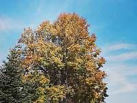Barvy podzimu ve vsi. - Lužnice