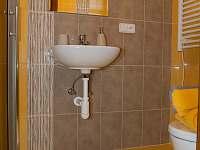 Chlívek - koupelna - ubytování Lužnice
