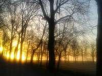 Odměna za brzké vstávání - východ slunce nad Rožmberkem - Lužnice
