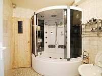 parní box, masážní sprcha, vana a vstup do sauny, společné pro všechny apartmány