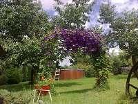 pohled na zahradu - chalupa k pronajmutí Opařany