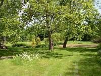 Pohled do zahrady s jezíkem - Popelín