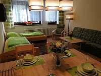 Ap.č.1 - obývací pokoj - apartmán k pronajmutí Lipno nad Vltavou