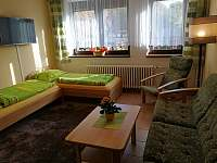 Ap.č.1 - obývací pokoj - pronájem apartmánu Lipno nad Vltavou
