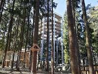 Stezka korunami stromů - pronájem apartmánu Lipno nad Vltavou