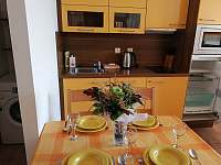 Studio č.3 kuchyň - apartmán k pronajmutí Lipno nad Vltavou