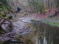 Příroda v okolí