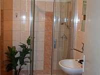 Koupelna 2 - chalupa k pronájmu Borkovice