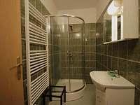 I.apartmán koupelna - pronájem chalupy Strmilov