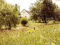Velká zahrada zajišťující soukromí - chalupa k pronajmutí Sumrakov