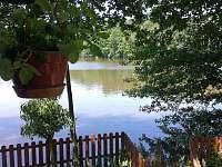 Chata u lesa - chata k pronájmu - 3 Dubné
