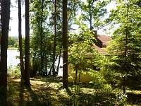 Les kolem chaty - k pronájmu Dubné
