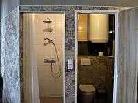 Wellnes - sprcha, toaleta