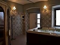 Wellnes - vířivka, sauna