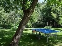 Farma Hamr zahrada a stolní tenis