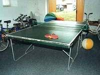 stolní tenis k dispozici