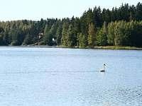 v okolí velké množství rybníků