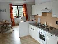 Kuchyně - apartmán k pronajmutí Lipno nad Vltavou