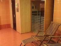 sauna a infrasauna - apartmán k pronajmutí Lipno nad Vltavou