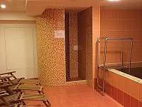 sauna-odpočívárna - pronájem apartmánu Lipno nad Vltavou