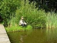 rybník Amerika vzdálený 2km, kde je možné zadarmo rybařit - chata k pronájmu Kunžak