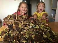 houbaření v jižních Čechách