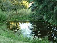 zahradní jezírko - chalupa k pronajmutí Záluží