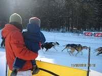 Každou zimu, je-li sníh, se v Klášteře konají závody psích spřežení.